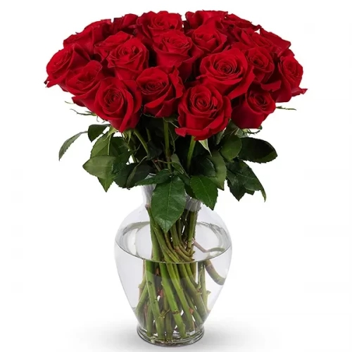 10 Red rose and 5 Baby-rose arrangement