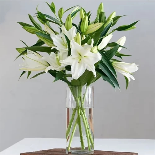 6 Stem White Lily with glass vase