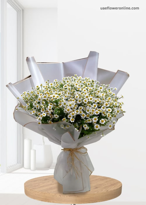 Aster flowers 10 stem bouquet with white wrapping