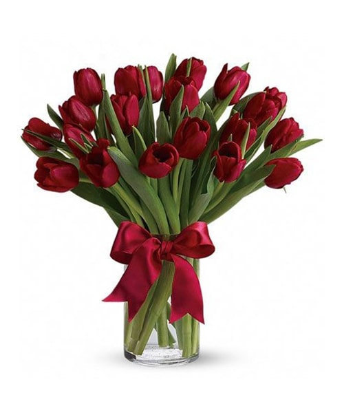 20 stem red tulip with glass vase