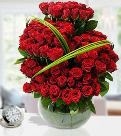 Roses Beauty of 100