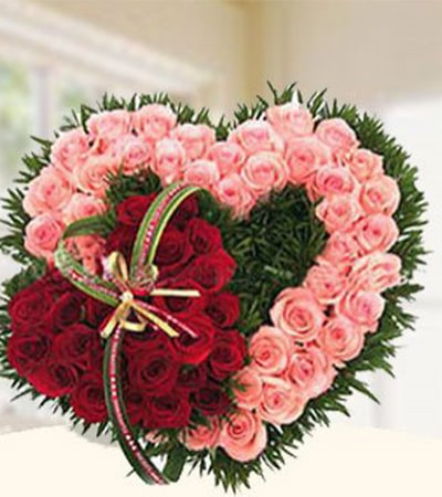 Red & Pink Roses