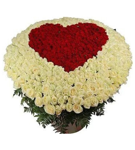 200 red and white roses heart shaped arrangement