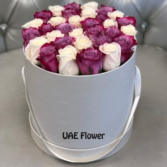 bewitching Purple and White Signature Roses